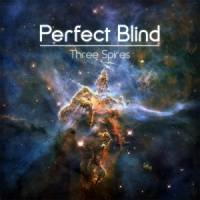 Perfect Blind