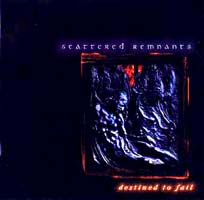 Scattered Remnants: Destined To Fail