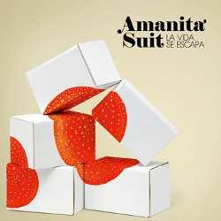 """Amanita Suit: Publican un nuevo álbum, """"La vida se escapa"""""""