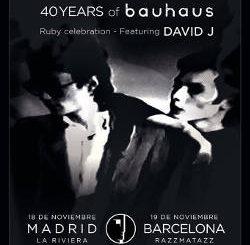 Peter Murphy : Su gira llegará a España entre los días 16 a 19 de noviembre.